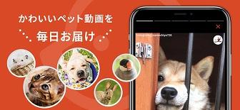 PECO 動物ケモナーアプリ