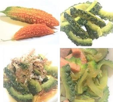 ニガウリ・ゴーヤが苦い原因【緑色・黄色・オレンジ 苦味を抑える方対策】