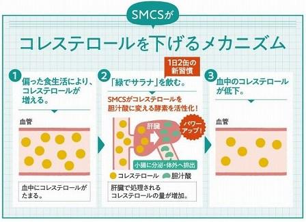 緑でサラナ アミノ酸SMCSの青汁