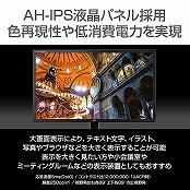 iiyama液晶ディスプレイ X3291HS-B1