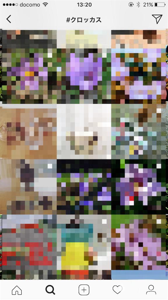 f:id:kamome-plants:20171126132249p:image
