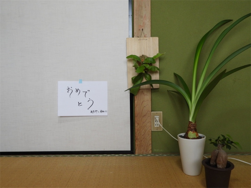 f:id:kamome-plants:20180810233138j:image