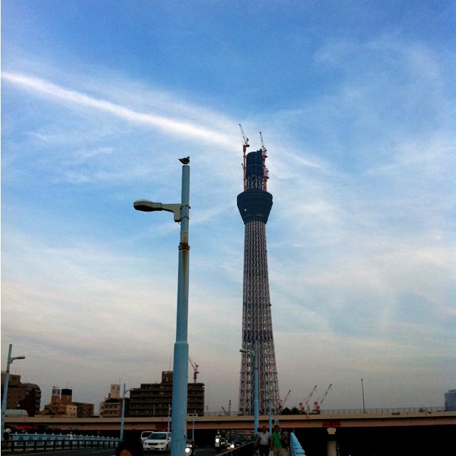 f:id:kamome-tokyo:20100912102413j:image:w450