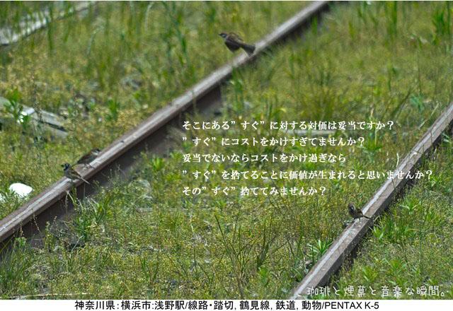 f:id:kamomenotoushi:20160813232143j:plain