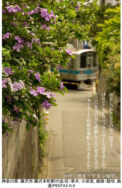 f:id:kamomenotoushi:20170129004841j:plain