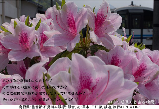 f:id:kamomenotoushi:20180213183228j:plain
