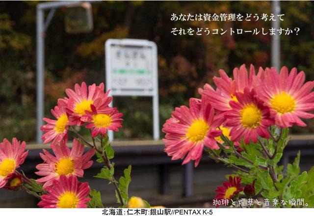 f:id:kamomenotoushi:20190108201510j:plain