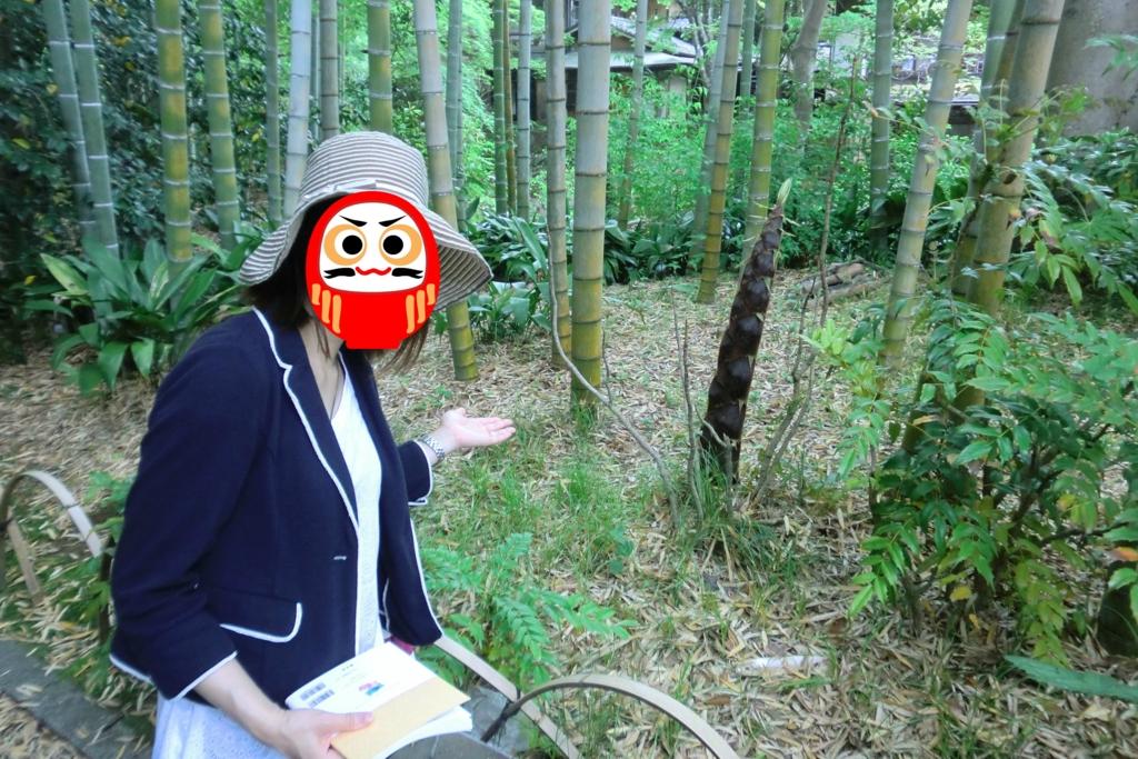 f:id:kamonji224:20160724144548j:plain