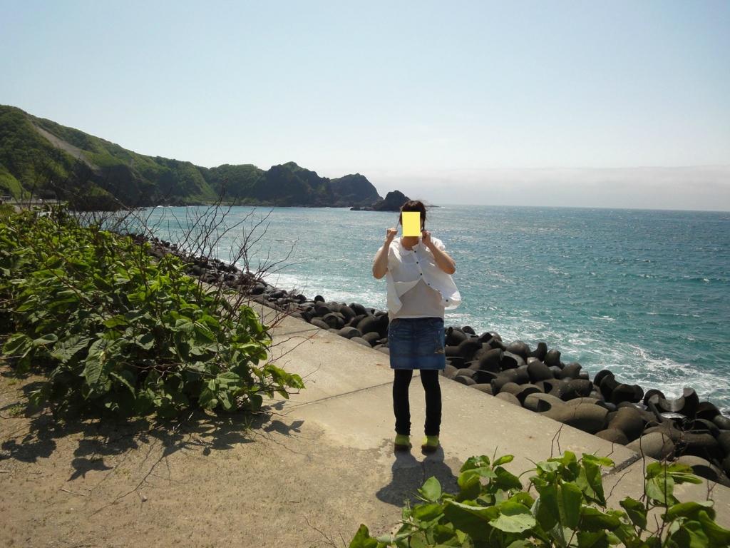 f:id:kamonji224:20160820173338j:plain