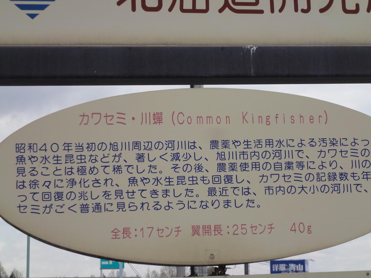 f:id:kamonji224:20190601213629j:plain