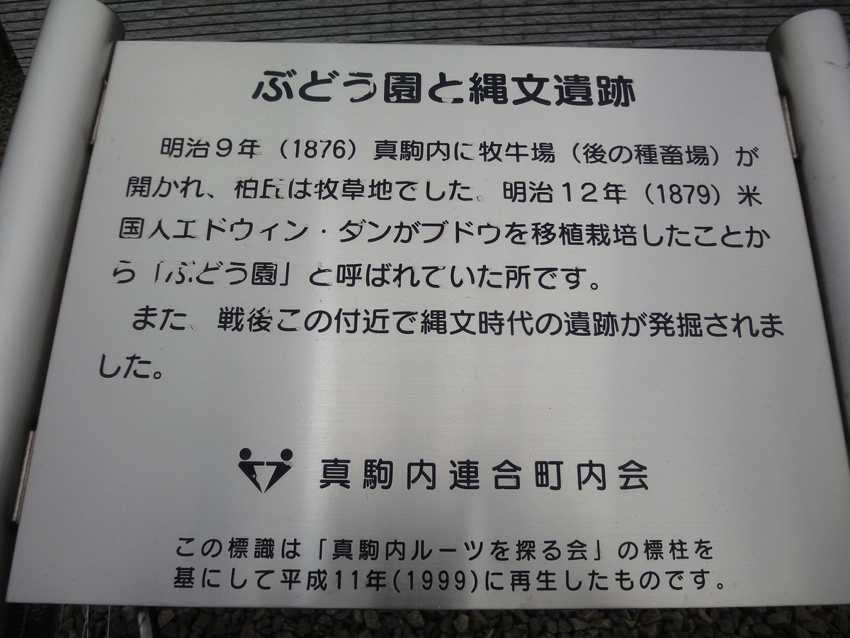 f:id:kamonji224:20200628160834j:plain