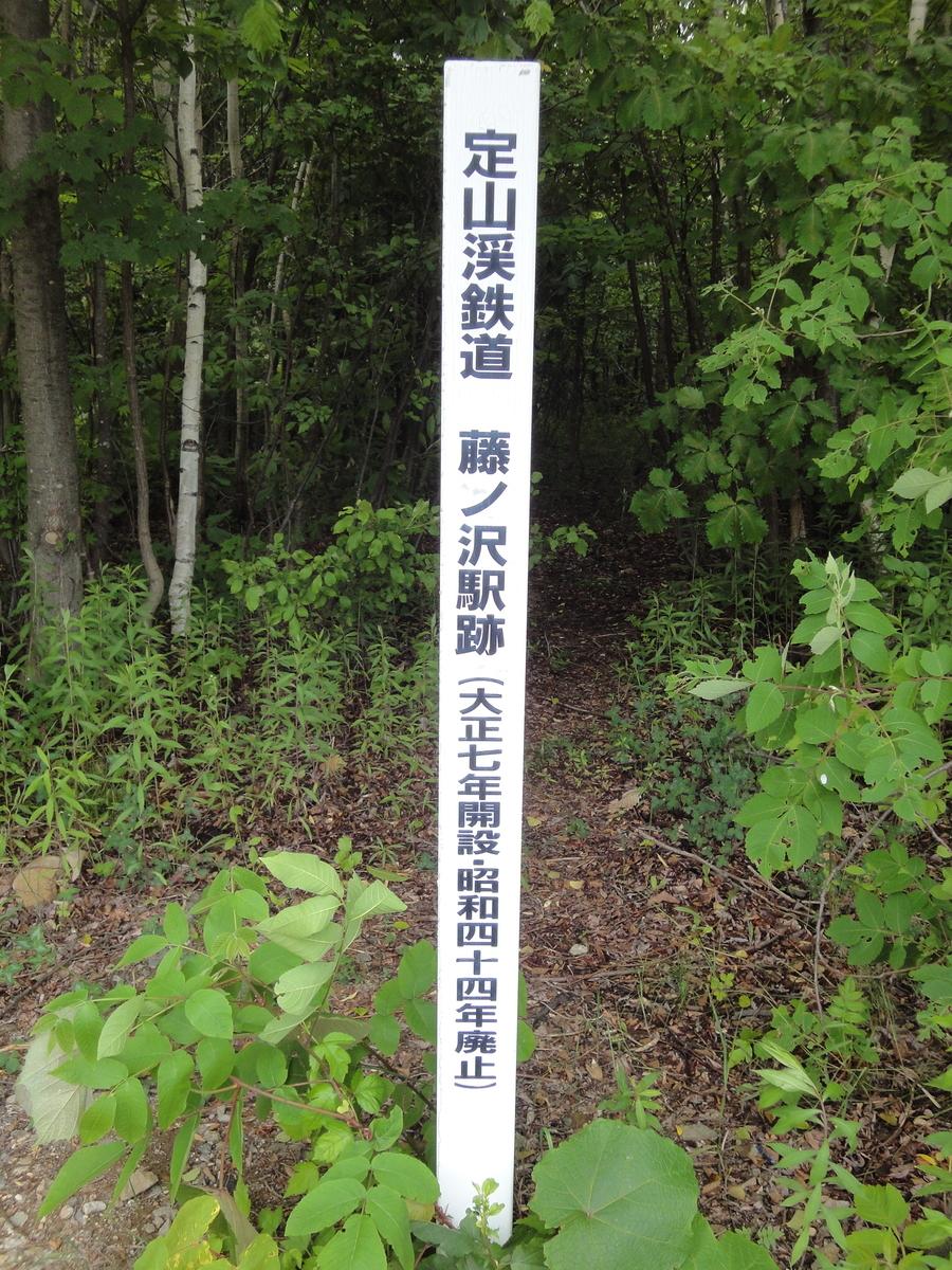 f:id:kamonji224:20200701225113j:plain