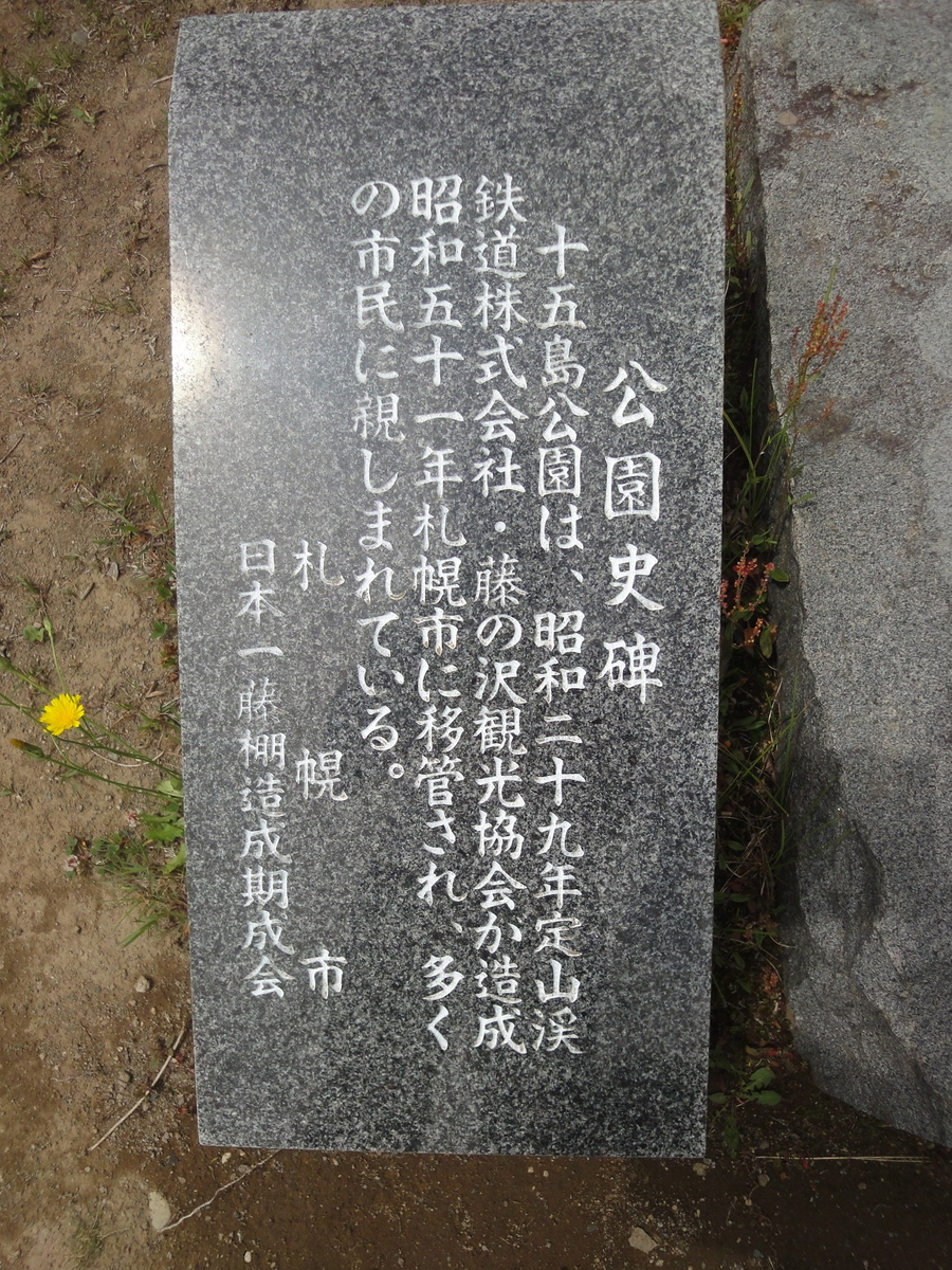 f:id:kamonji224:20200704205740j:plain