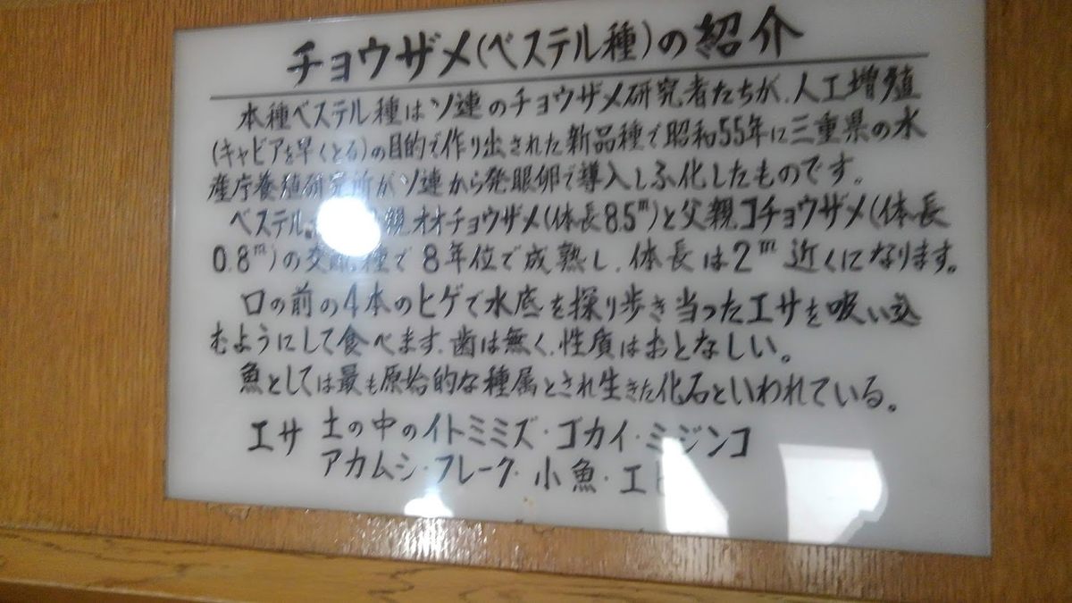 f:id:kamonji224:20200914104350j:plain
