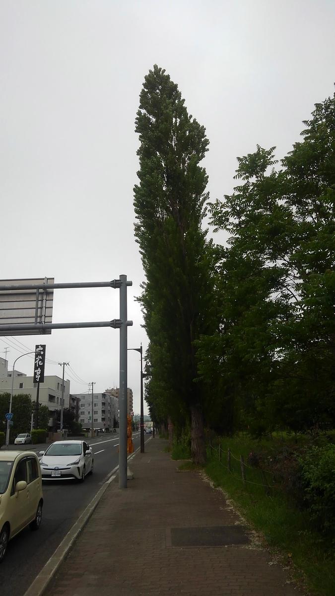 f:id:kamonji224:20210711181547j:plain