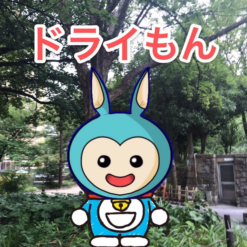 f:id:kamosakura:20190708140520j:plain
