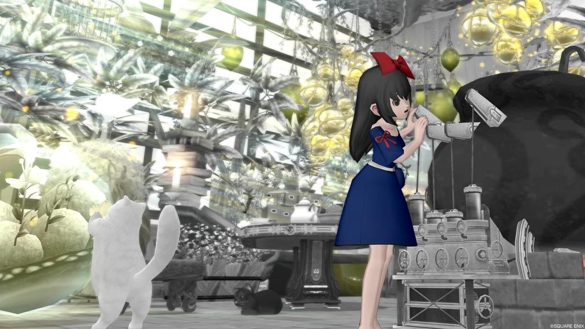 f:id:kamosakura:20200215005212j:plain