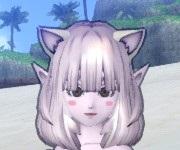 f:id:kamosakura:20200820163210j:plain
