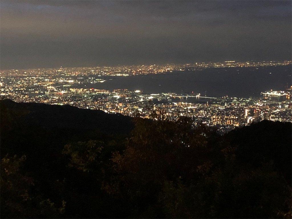 f:id:kamosakura:20201102004456j:image