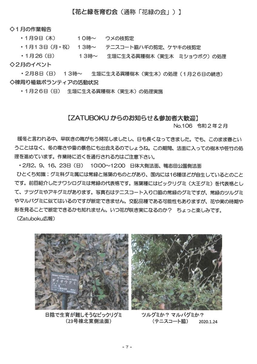 f:id:kamoshidanishi-blog:20200205115400j:plain