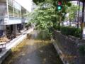 京都新聞写真コンテスト 高瀬川 青信号です