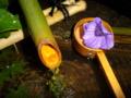 京都新聞写真コンテスト 天得院 柄杓に浮かぶ桔梗