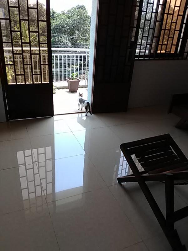 f:id:kampongcham2:20180308233108j:plain