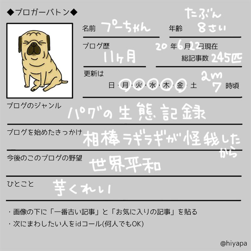 f:id:kamupug:20200619115256j:plain