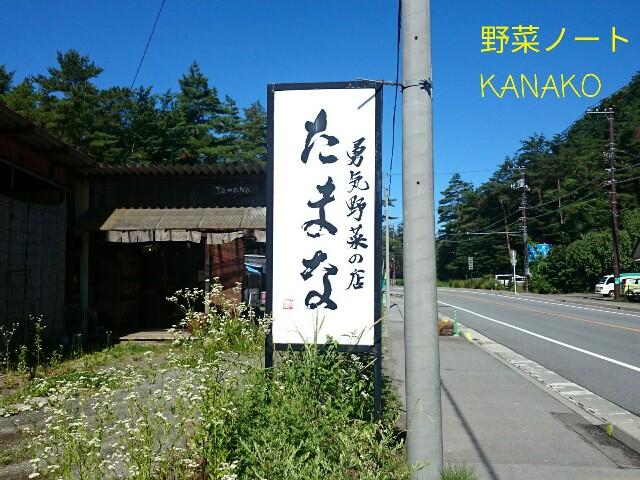 f:id:kana-note:20170508102118j:image