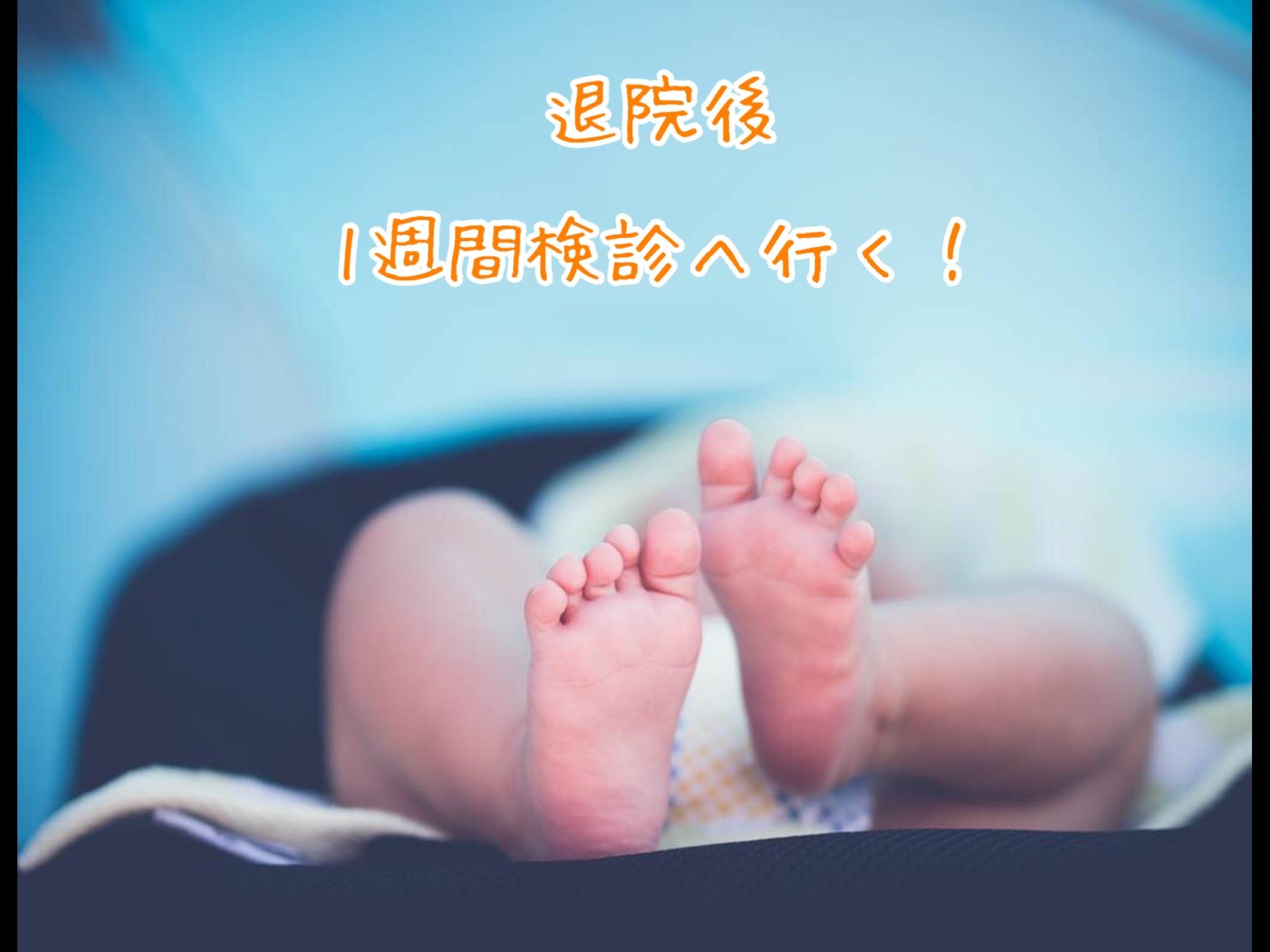f:id:kanaemama:20190624153450j:image
