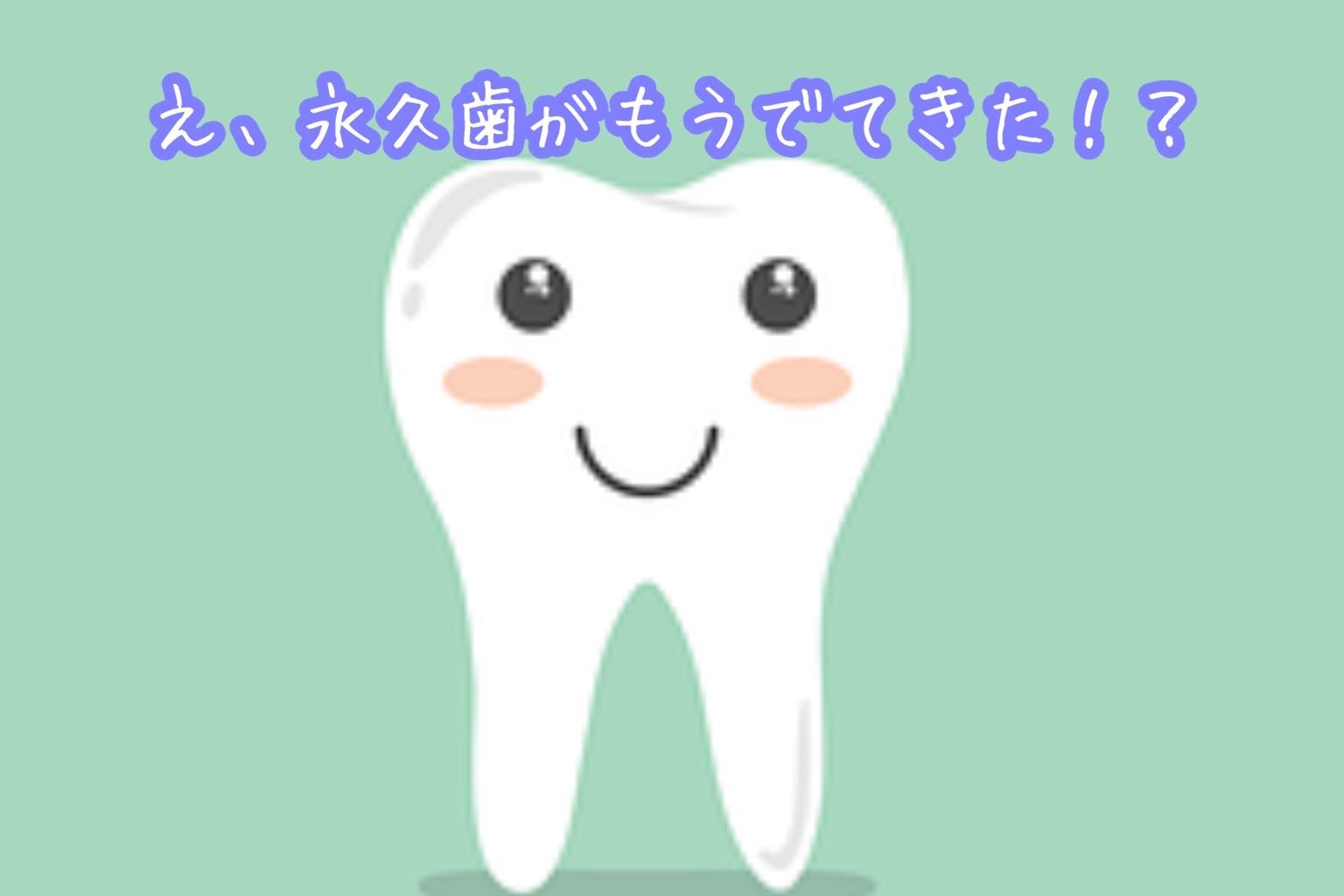 f:id:kanaemama:20210301143327j:image