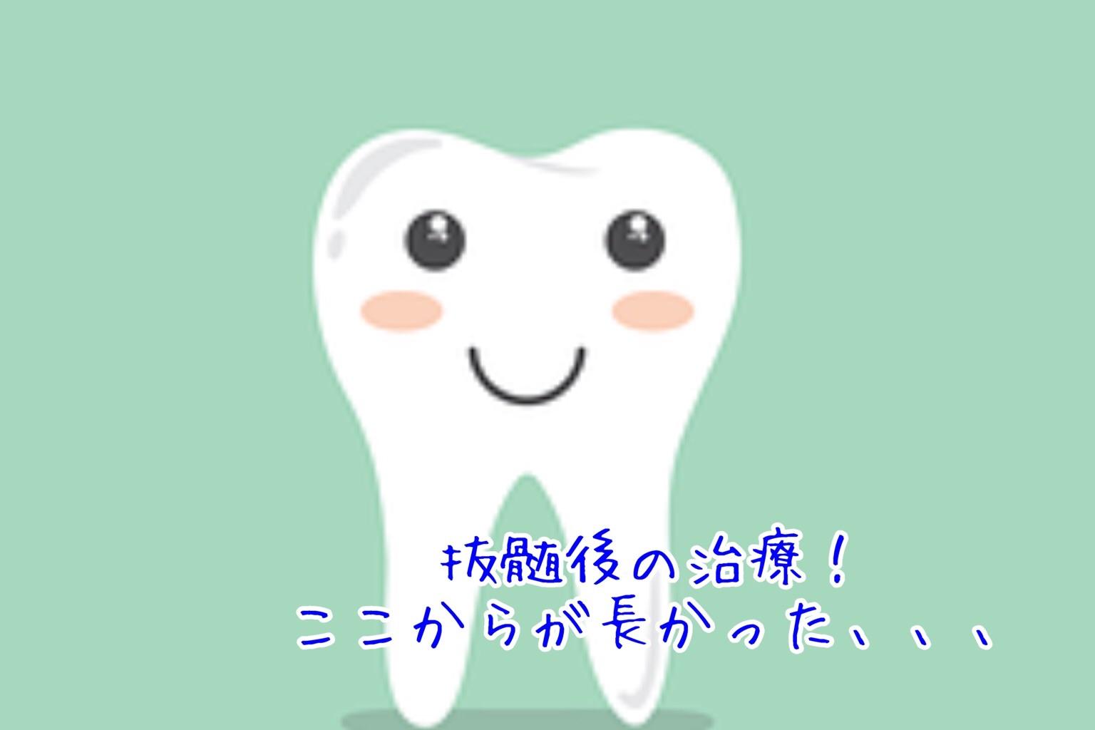 f:id:kanaemama:20210301143503j:image