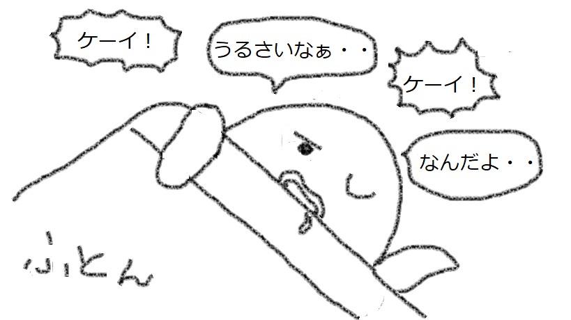 f:id:kanahiro9-22_22-8-8:20180204062828j:plain