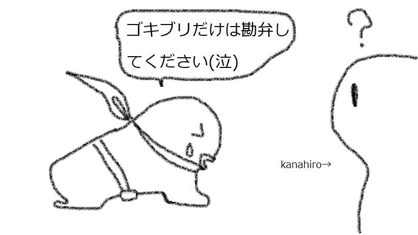 f:id:kanahiro9-22_22-8-8:20180204155002j:plain