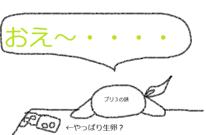 f:id:kanahiro9-22_22-8-8:20180223222742j:plain