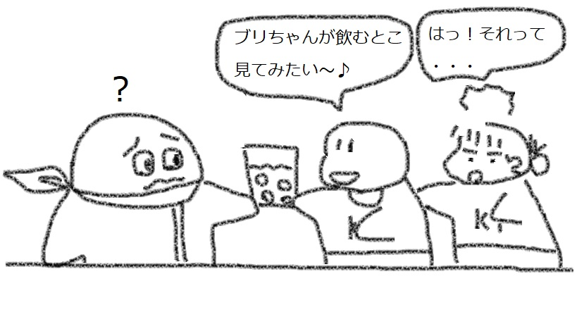 f:id:kanahiro9-22_22-8-8:20180301041036j:plain