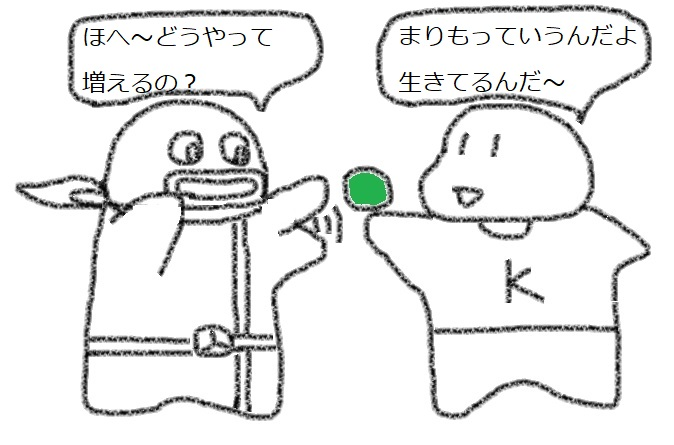 f:id:kanahiro9-22_22-8-8:20180328054124j:plain