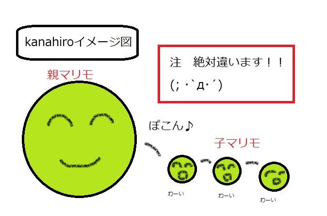 f:id:kanahiro9-22_22-8-8:20180328054217j:plain