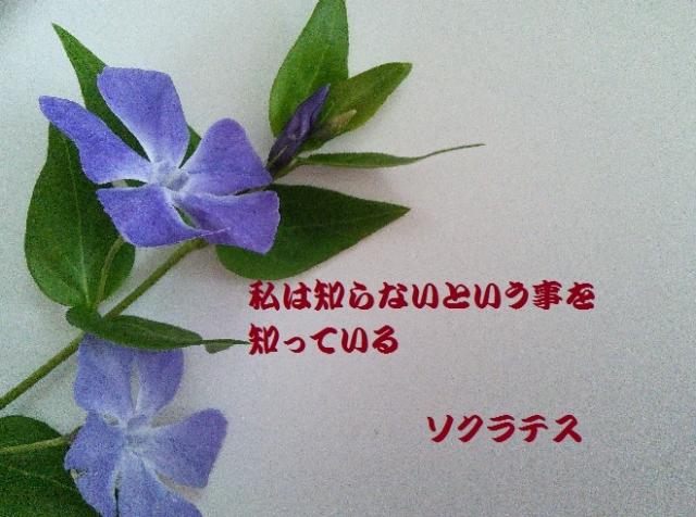 f:id:kanahiro9-22_22-8-8:20180425182318j:plain
