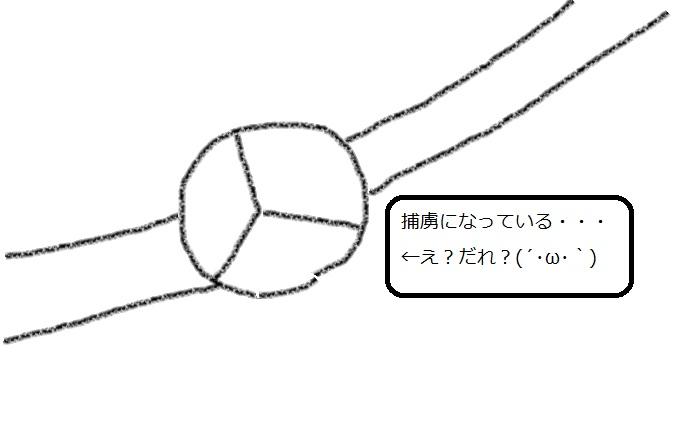 f:id:kanahiro9-22_22-8-8:20180428053350j:plain