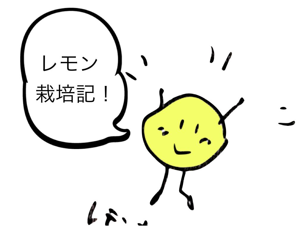 f:id:kanaida:20170116232847p:plain