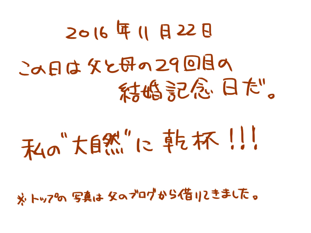 f:id:kanako1217:20161125190712j:plain