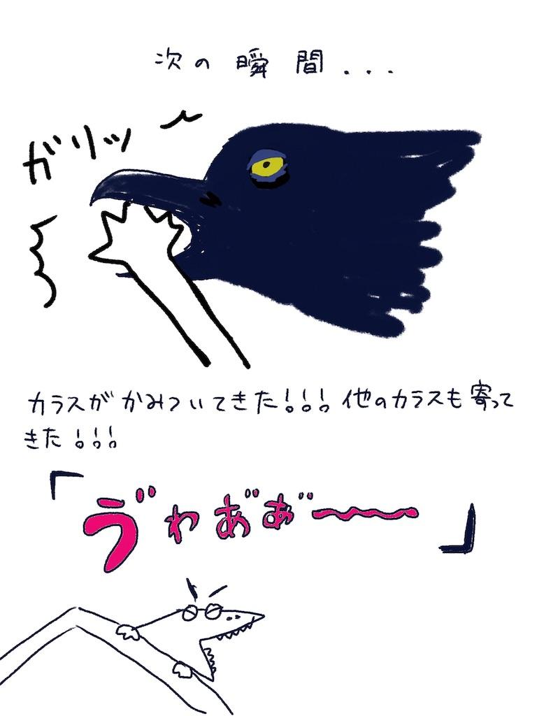 f:id:kanako1217:20180618090228j:image