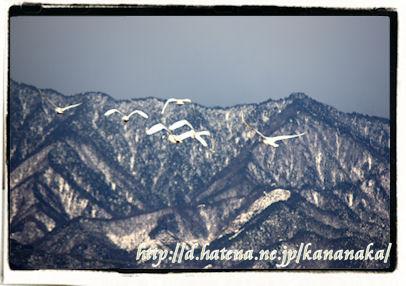 f:id:kananaka:20100120010957j:image