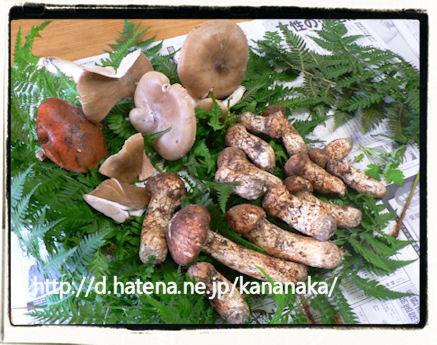 f:id:kananaka:20101017210049j:image