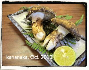 f:id:kananaka:20101017210058j:image