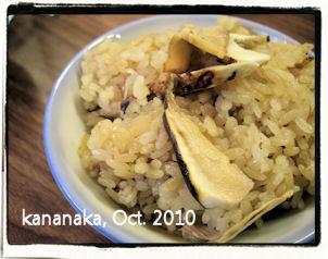 f:id:kananaka:20101017220250j:image