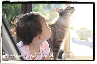 f:id:kananaka:20120712154007j:image