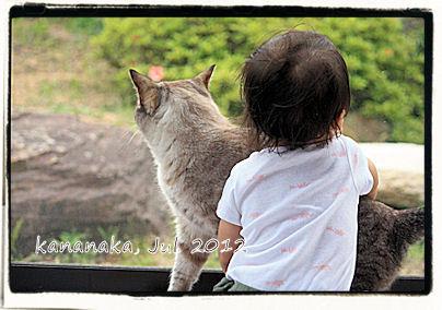 f:id:kananaka:20120712154008j:image
