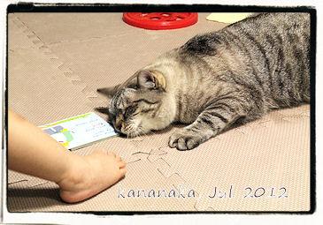 f:id:kananaka:20120712154009j:image